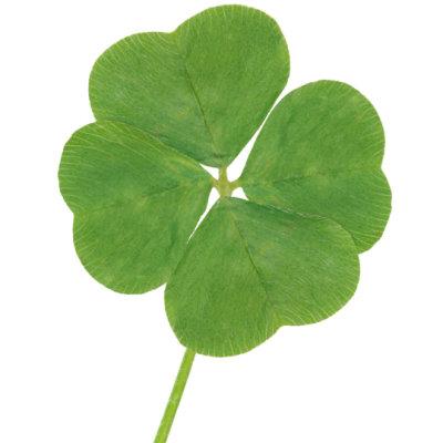 Cum ne afecteaza norocul si ghinionul?