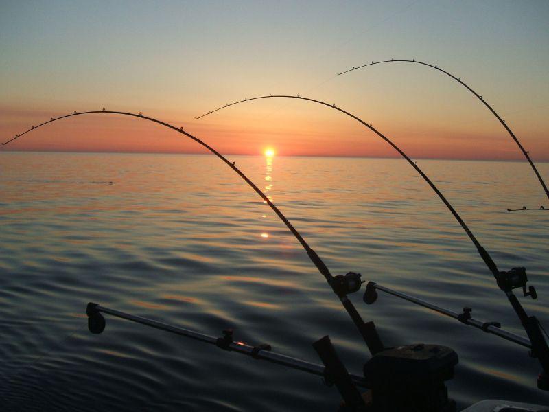 Pescari vs. Proprietari de baltă