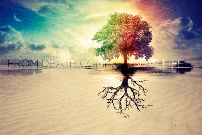 Unul vrea viața, altul vrea moartea