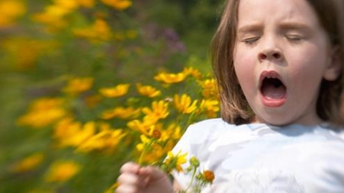 Ce e de făcut când ai o Criză de Rinită Alergică?