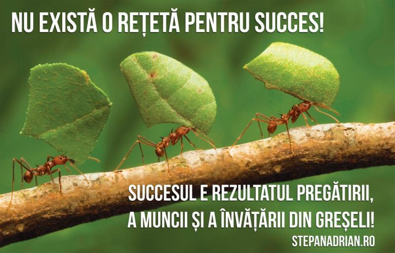 Citatul zilei – Nu există o rețetă pentru succes…