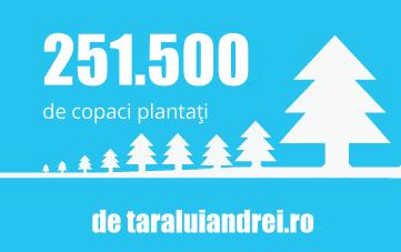 Voluntarii de la Țara Lui Andrei au plantat 251.500 de pomi