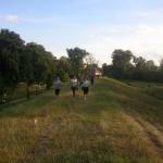 Alerg pentru Oana