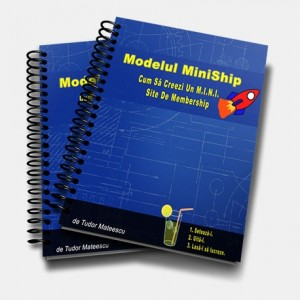 modelul-miniship-magazin-458x460